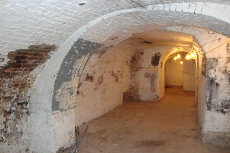 Damp Vaults in a Grade 2 Listed Basement